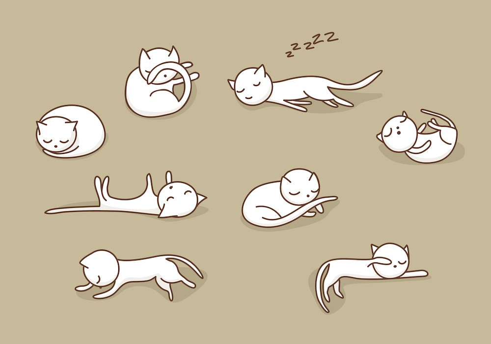 The best and the worst sleeping position for your health